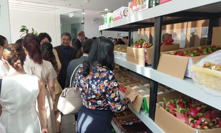 Tập đoàn VINA T&T bán hàng xuất khẩu cho người tiêu dùng trong nước