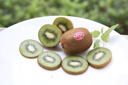 Kiwi OSCAR®- Đặc sản trái cây đến từ Pháp