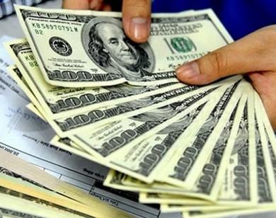 Tỷ giá USD hôm nay 21/6: Giá USD tiếp tục giảm mạnh