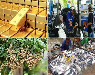 Tiêu dùng trong tuần: Giá vàng, xăng dầu, nhãn tăng mạnh, trong khi giá cá, tôm và chôm chôm giảm