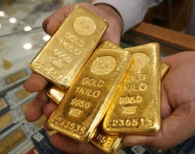 Giá vàng hôm nay 29/7/2019: Vàng tăng nhẹ phiên đầu tuần