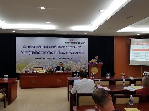 An Dương Thảo Điền: Doanh thu năm 2019 giảm 19% so với 2018