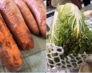 Vụ suất ăn bán trú trường Tiểu học Trần Thị Bưởi: Công ty Nidsan cung cấp thực phẩm héo úa, dập nát?