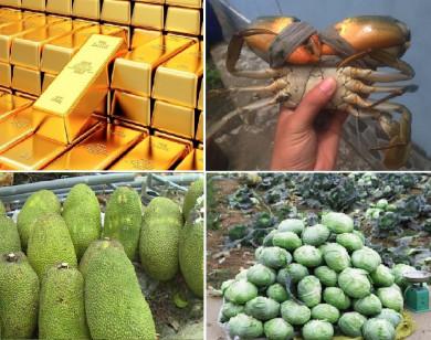 Tiêu dùng trong tuần (từ 15-21/2/2021): Giá vàng, rau xanh, tôm giảm mạnh